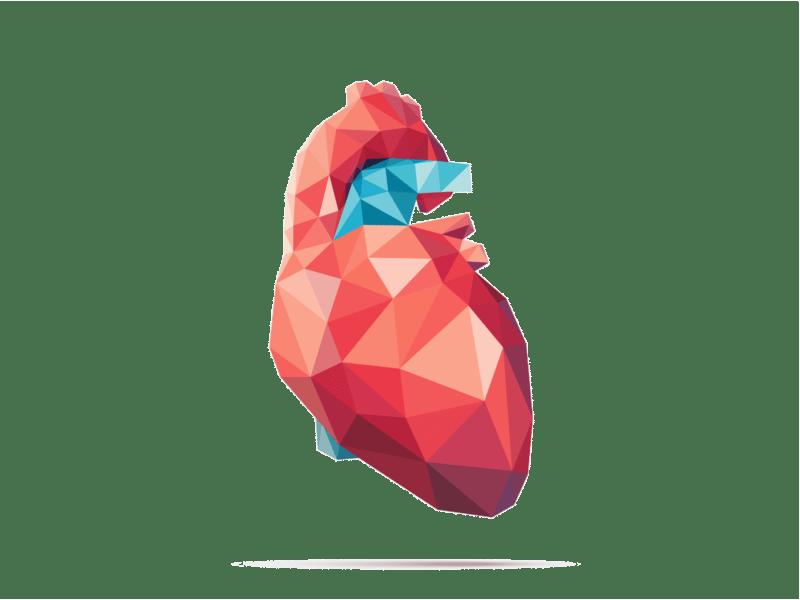 Cardiologische Keuring CBR